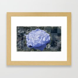 Blue Moon Rose and Me Framed Art Print