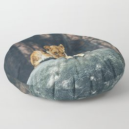 Lion on the rock Floor Pillow