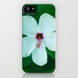 HIBICUS FLOWER iPhone Case