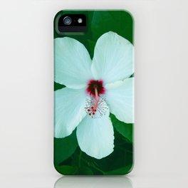 HIBICUS FLOWER iPhone Case