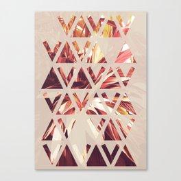 triv Canvas Print