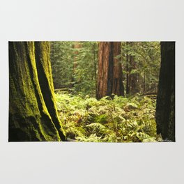 Fern footing Rug