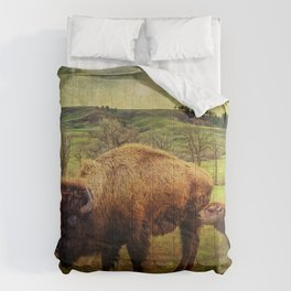 Bison and Calf Comforters
