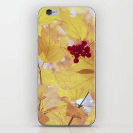 KALINA iPhone Skin