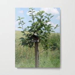 A tree house Metal Print
