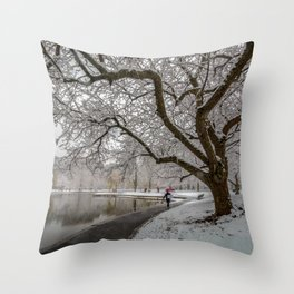 Boston Garden - winter walk Throw Pillow
