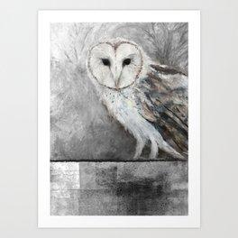 La Chouette-effraie - The Barn Owl Art Print