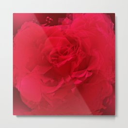 Bloomed Rose Profound Red Metal Print