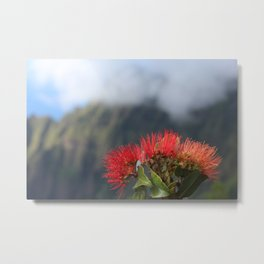 Lehua ʻUlaʻula o Kalalau Metal Print
