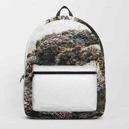 Tofino: Barnacles Backpack