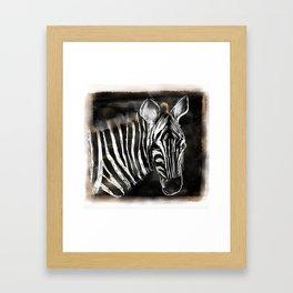 Zachary the zebra Framed Art Print