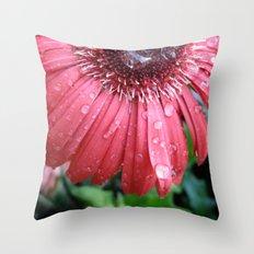 Morning Rain Throw Pillow