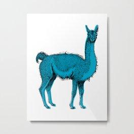 guanaco Metal Print