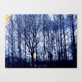 Arkansas Blues Canvas Print