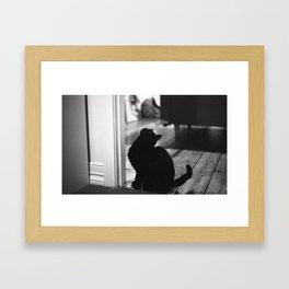My friends black cat Framed Art Print