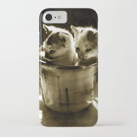 kittens iPhone & iPod Cases featuring Kittens by Northern Light Images
