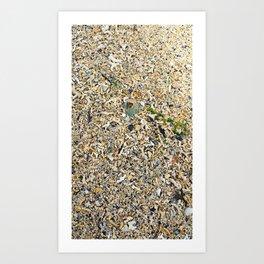 She sells sea shells... Art Print