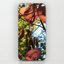 Shadows  iPhone Skin