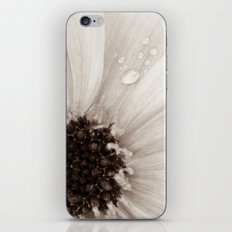 Flower with droplets iPhone & iPod Skin