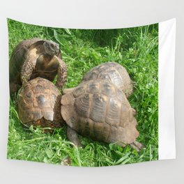 Bullied into Submission - Mating Tortoises Wall Tapestry