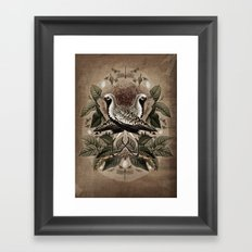 Pluvialis squatarola Framed Art Print