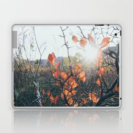 Golden Hour in mid October Laptop & iPad Skin