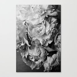 Peonies Black and White 1 Canvas Print