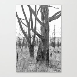 Echoes of the Past Canvas Print