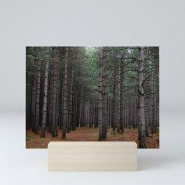 Endless Pines Mini Art Print