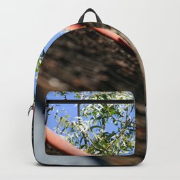 Roof Backpack