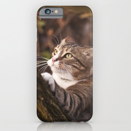 Chrapcio the Fierce iPhone & iPod Case