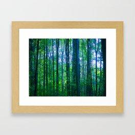 Afternoon Forest Framed Art Print