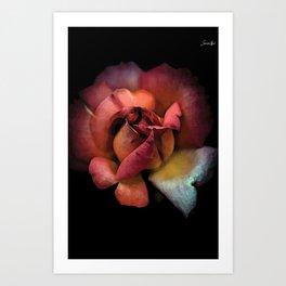 Rose fatiguée colors fashion Jacob's Paris Art Print