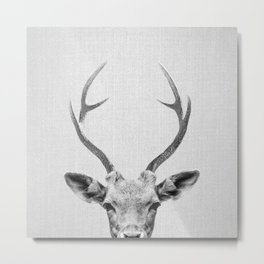 Deer - Black & White Metal Print