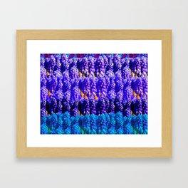 Lavender's Blue Framed Art Print