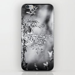 Grunge Film Noir Dried Plants Nature Image iPhone Skin