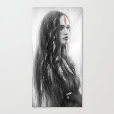 War Feathers Canvas Print