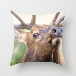 Watercolor Elk Bull 16, On the Ent Throw Pillow