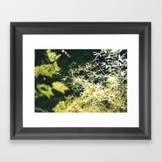 nature 2 Framed Art Print