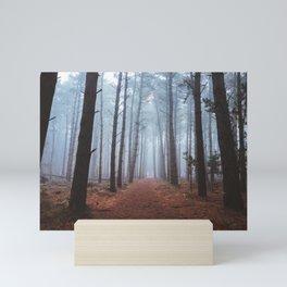 Secrets Of The Woods Mini Art Print