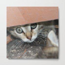 Peeking eyes Metal Print