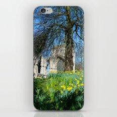 Spring in Museum Gardens iPhone & iPod Skin