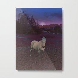 Violet SS16 Metal Print