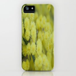 Silver Wattle iPhone Case