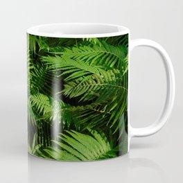 Ferns in the garden Coffee Mug