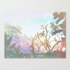 Living in the Sun Canvas Print