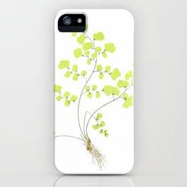 Maidenhair Fern iPhone Case