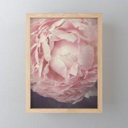 Peony Flower Framed Mini Art Print