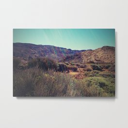 lavaland rainbow - two Metal Print