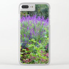 Purple Salvia In The Garden Clear iPhone Case